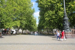 Dresden-028-